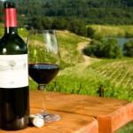 Récord histórico en la exportación de vino
